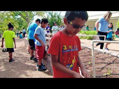Garden Learning How To Garden