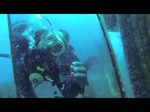 Diving with nautilus diving club