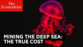 Mining the deep sea: the true cost to the planet | The Economist