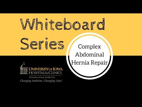 Open ventral hernia repair technique