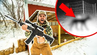 I FOUND the ANIMAL KILLER in My BACKYARD FARM!!! (Help Me Catch It)