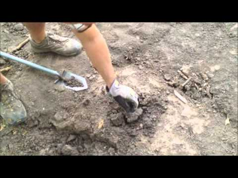 Excavating & Metal Detecting Old Home Site