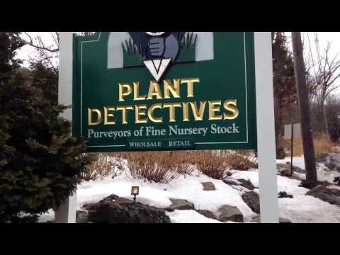 Need Trees plants and shrubs ?   Wholesale and retail nursery and garden center review  NJ NY PA