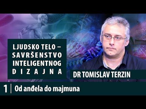 1.  Od anđela do majmuna - dr Tomislav Terzin, Savršenstvo inteligentnog dizajna