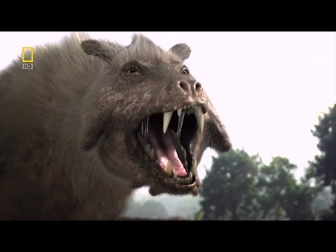 Dinosaurs Documentary - Prehistoric predators  Killer pig  National Geographic 2015