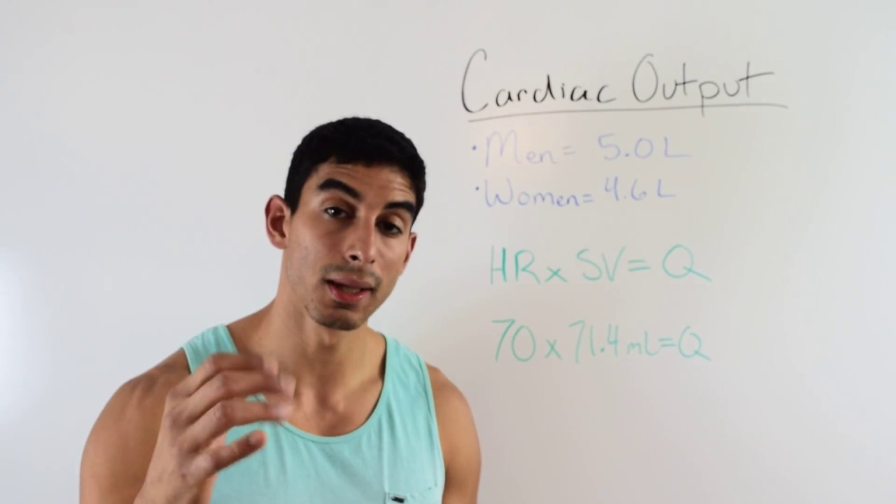 Understanding And Calculating Cardiac Output Acsm Certified