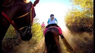 Endurance Riding - FuN At Any Age!!