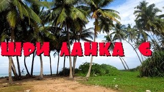 Шри-Ланка 6: Местный общепит