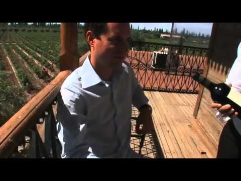 We bring the wine, you prepare the food - Episode 1 (Mendoza, Argentina)