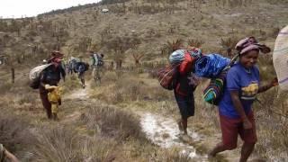 Seven Summits - Carstensz Pyramid 2015