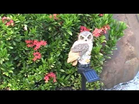 Solar Owl Light 1 Pack