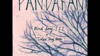 "Pandafan- ""Bird Song Part 1 & Part 2"" indie folk, acoustic, harmonies"