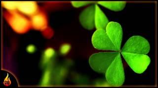 Contemporary Irish Music | Dublin | Guitar, Violin, Drums