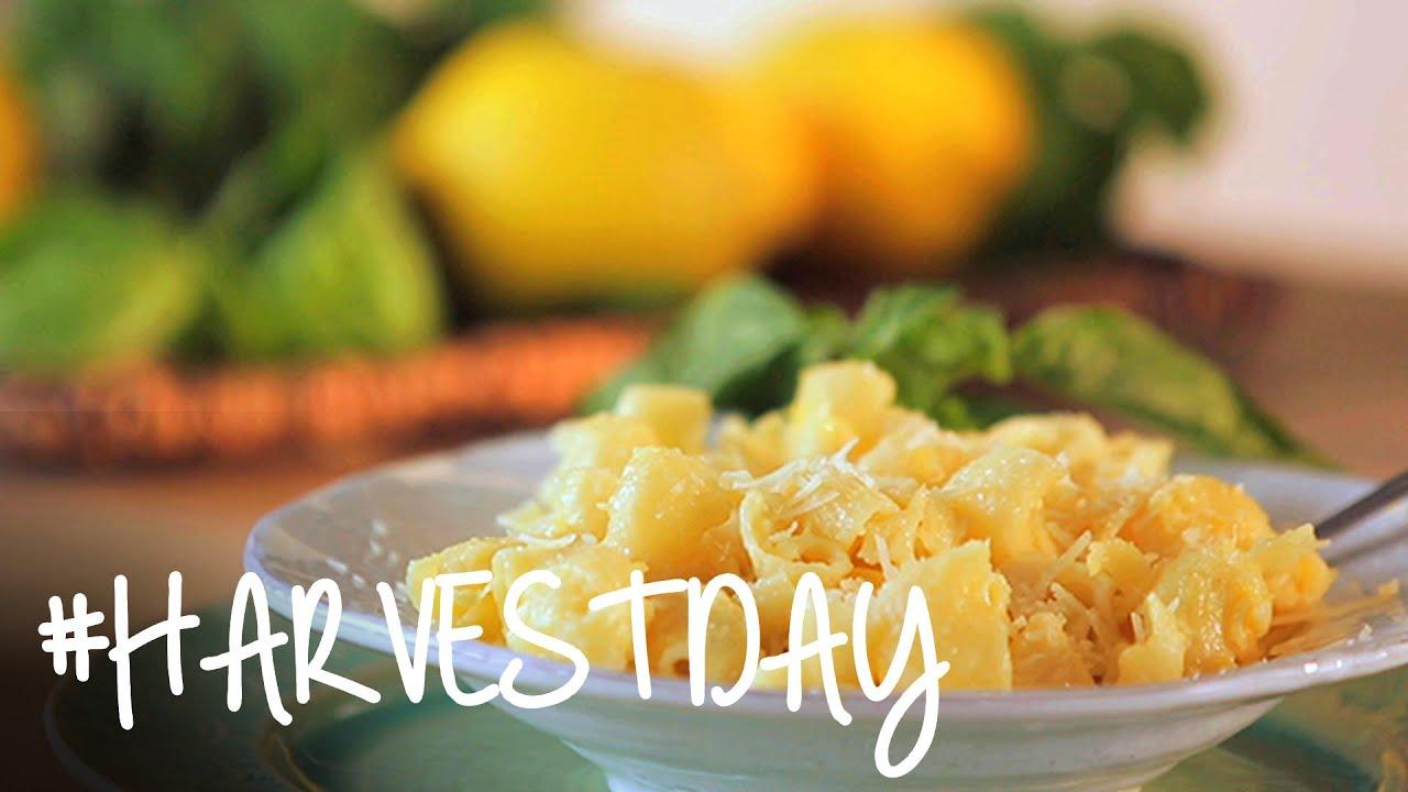 Oprah lemon chicken recipe