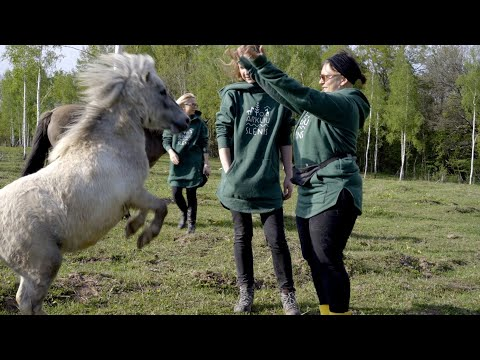 Būti su arkliais