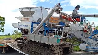 รถเกี่ยวข้าวแรงๆ-รถเกี่ยวนวดข้าว-อำนวย-การช่าง-ขึ้นเทรลเลอร์-combine-harvester