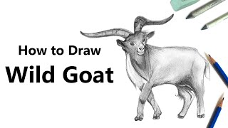 How to Draw a Wild Goat with Pencils [Time Lapse]