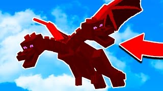 THE NEW MINECRAFT ENDER DRAGON!