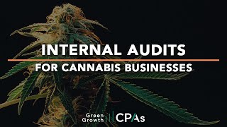 Internal Audits for Cannabis Businesses