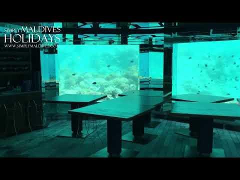 Anantara Kihavah Maldives Sea Underwater Restaurant (Day) - Simply Maldives Video