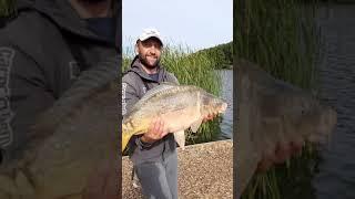 карпфишинг карп карпыч ловля карпа bigfish carp carp fishing большая рыба