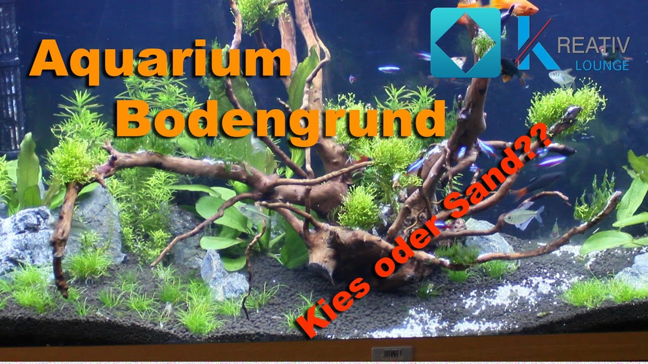 der richtige bodengrund f r dein aquarium kies oder sand youtube. Black Bedroom Furniture Sets. Home Design Ideas