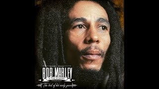 "Bob Marley ""The best of his early years"" 2hrs 45 min.of pure reggae music"