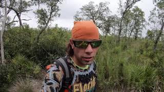 Hiking Adventure at Chassahowitzka Wildlife Management Area