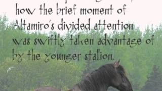 Sorraia Stallions Standoff