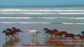 3D Видео - Природа, животные