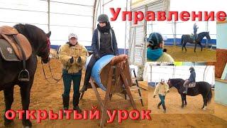 Управление лошадью. Проводимость и посадка всадника.