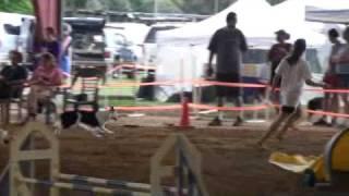 Hemi Grand Prix