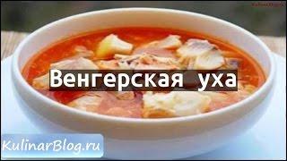 Рецепт Венгерская уха