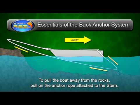 The Back Anchor Sytem