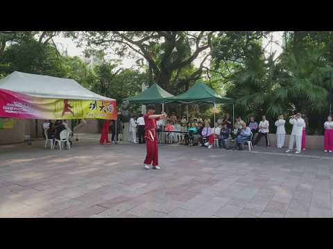 Northern Shaolin #7 Moi Fah Shaolin Form 北少林伍鎮榮 - 梅花少林拳