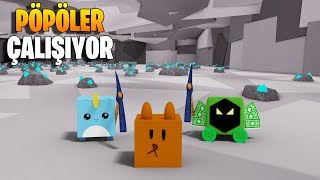 🐶 Trained My Pets and Made A Miner :D 🐶 | Pet Mining Simulator | Roblox English