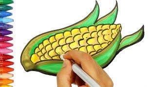 Как рисовать кукуруза 🌿- кукуруза раскраска -Как рисовать и цвет