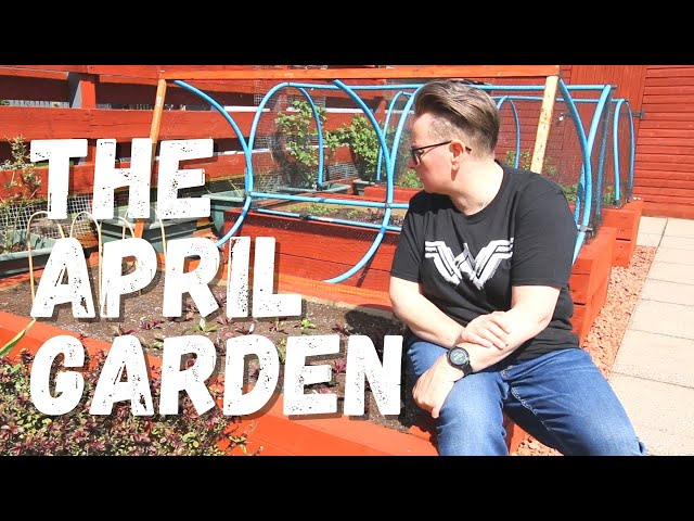 The big garden update for April