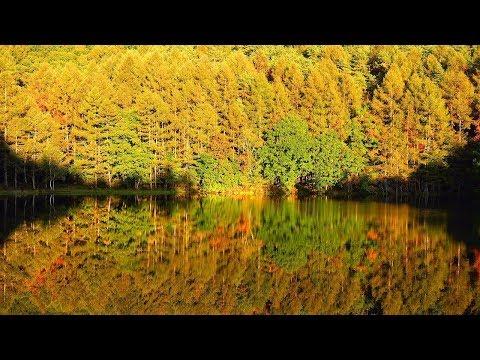 4K 紅葉 絶景 癒し自然映像 「初秋~錦秋の御射鹿池」Japan Mishaka Pond Autmun / アヴェマリア シューベルト Christmas Ave Maria