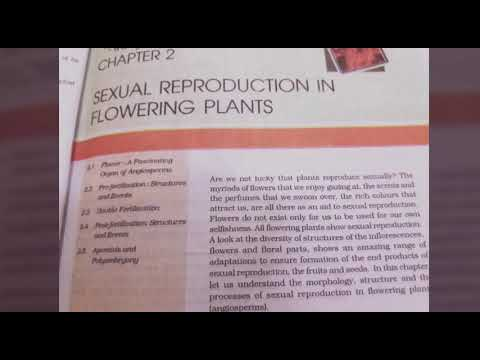 Chapter 2 Sexual Reproduction in flowering plants class 12th ( NCERT READING ) thumbnail