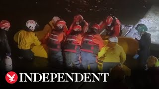 Stranded whale rescued from River Thames