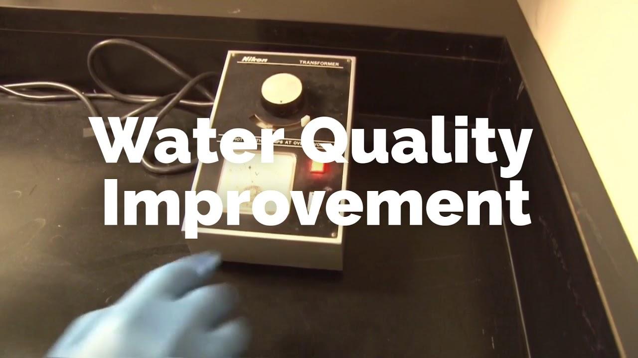 Lake & Pond Management - Aquatic Control