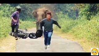 Stupid Humans vs Smart Wild Animals 3