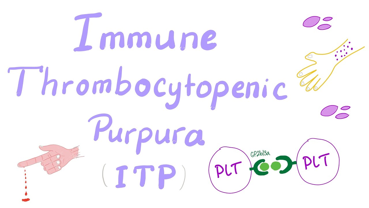 What is ITP in medical terms