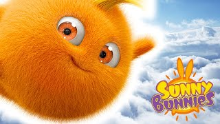 Cartoons for Children | Sunny Bunnies POWER OF THE BUNNIES  | Funny Cartoons For Children