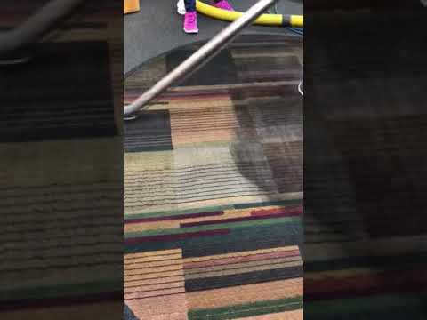 Dirty nylon area rug steam cleaning