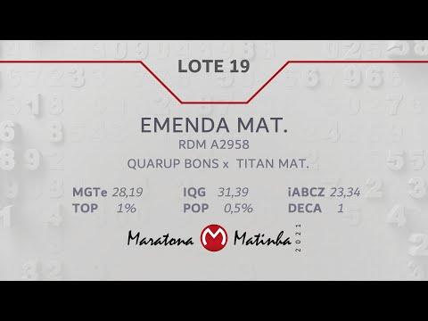 LOTE 19  Maratona Matinha
