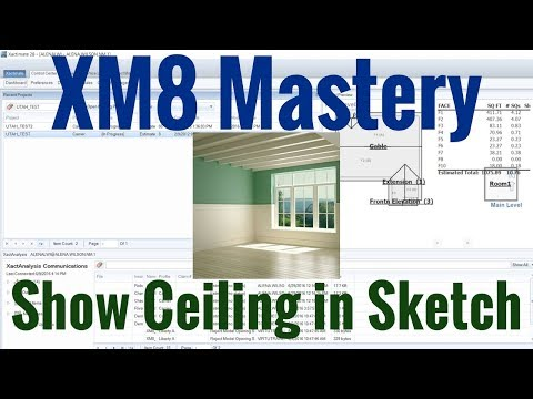 Show Ceilings in Sketch - YouTube