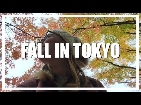 Fall in Tokyo - My 3 Favorite Places To View The Fall Foliage    TRAVEL    emilylouisemaitland ❤︎