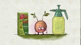 Престиж. Надійний захист і здоровий ріст картоплі.